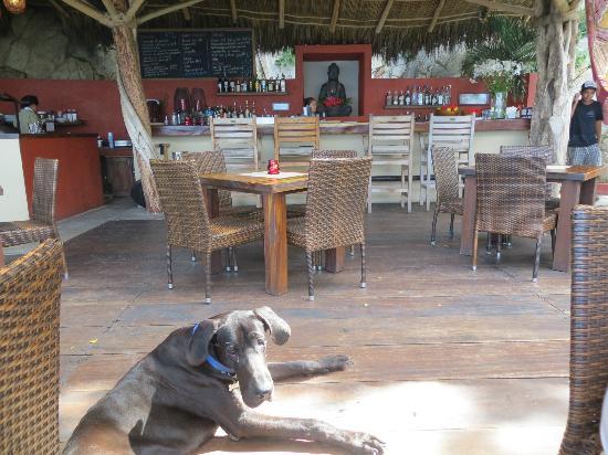 Ocean Grill Restaurant & Beach Club: view into the restaurant