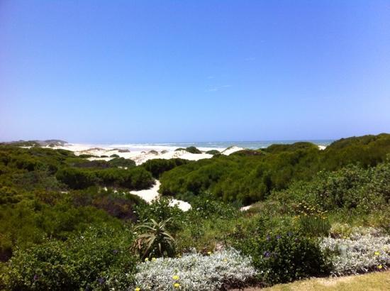Paradise Beach: Der Blick von unserem Guesthouse auf diesem tollen Beach