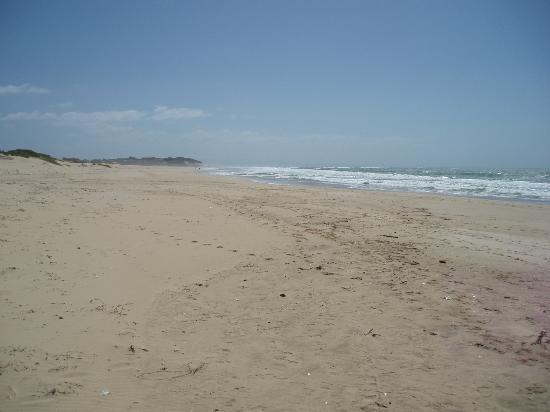 Paradise Beach: Sand, Sand, Sand