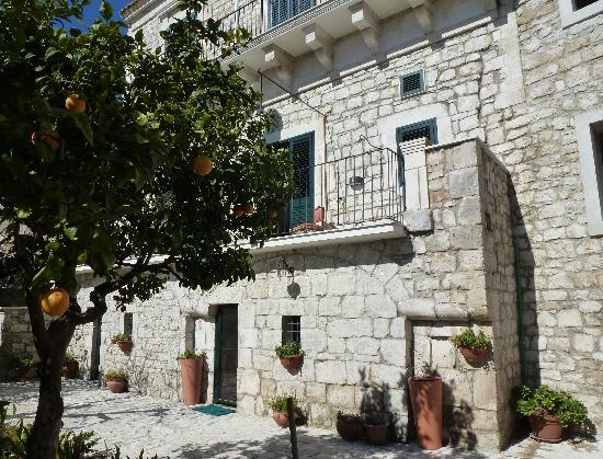 Il Giardino dei Mandarini: Il Palazzo con le terrazze sul girdino