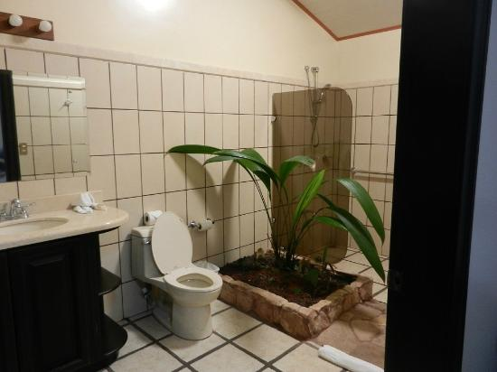 Arenal Manoa Hotel: Bathroom