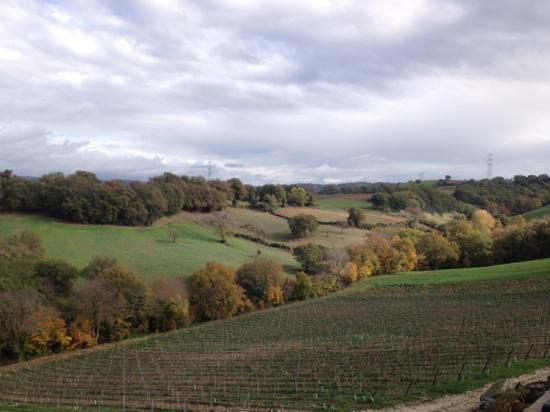 Villa Acquaviva: panorama dalla cantina 