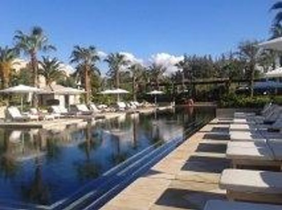 Four Seasons Resort Marrakech : Pool