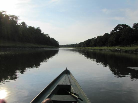 Mamiraua Sustainable Development Reserve : Boat ride down the river