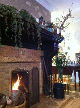 The Captain's Quarters: The fireplace in room 5