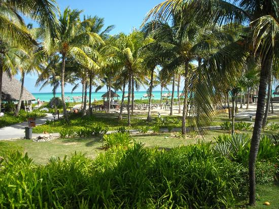 Sol Cayo Guillermo: View from room