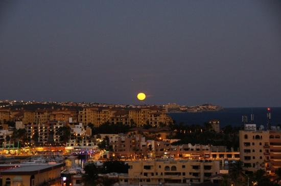 Portofino de Cabo Resort : Loved the balcony on the top condo!