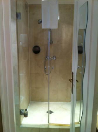 BEST WESTERN Saint Martin Bastille: duschen