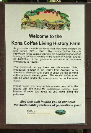 Kona Historical Society: Here we are !