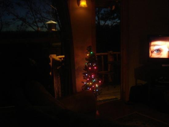 Treehouse Cottages: Suprising Christmas Tree.... Happy Holidays!