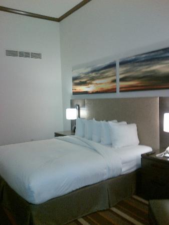 Hilton Dallas Park Cities: Bedroom