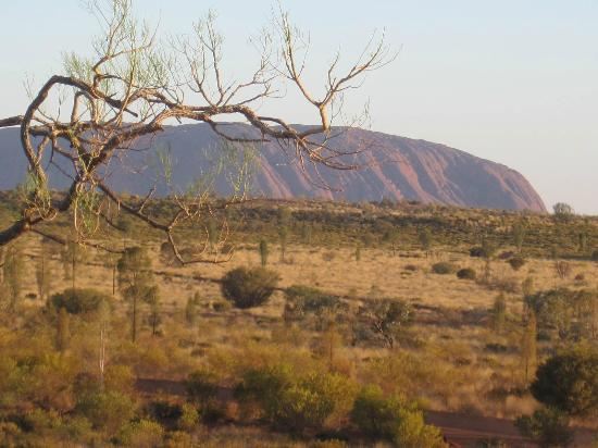 Desert Gardens Hotel, Ayers Rock Resort: View from the Lookout Point