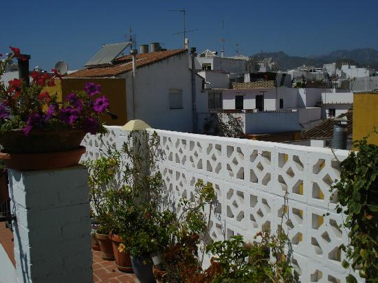 Hostal Miguel: La terrazza dove si fa colazione