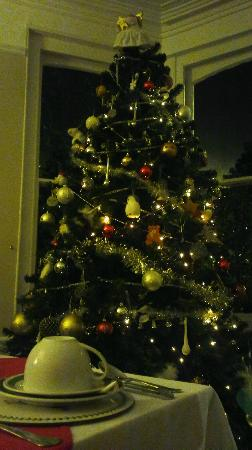The Donnington Guesthouse: The Donnington Christmas tree