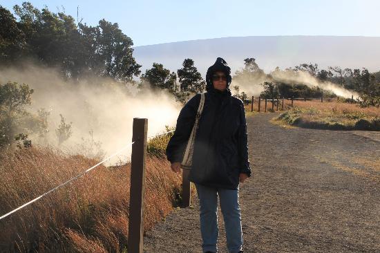 Kilauea Volcano: cornice cratere kilauea con fumarole