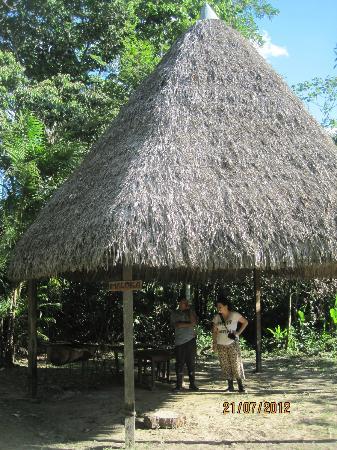 Ivy Mara Ey Lodge : alrededores de los lodges