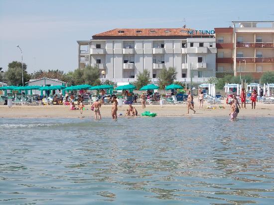 Hotel Nettuno Senigallia: hotel e spiaggia