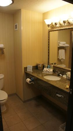 Holiday Inn Express Hotel & Suites Dewitt (Syracuse): Bathroom
