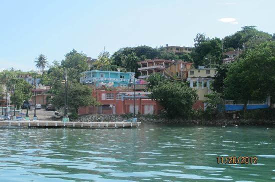 Casa Libre Puerto Rico: A view of the B&B from Capt Frank's boat