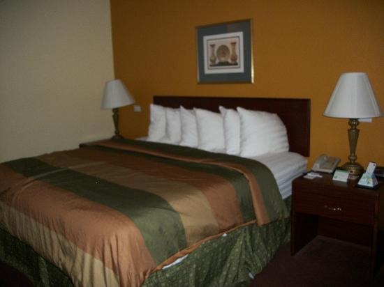 Best Western B. R. Guest: Comfy bed--more updated decor than most of the pictures.