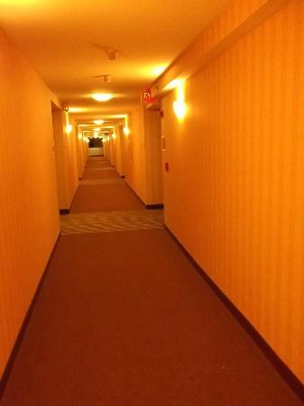 Four Points by Sheraton Peoria Downtown: Hallway