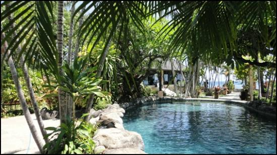 Hidden Paradise Cottages: Cool pool