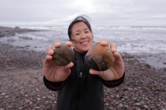NWR Terrace Bay Resort: Exploring pebbles on the beach
