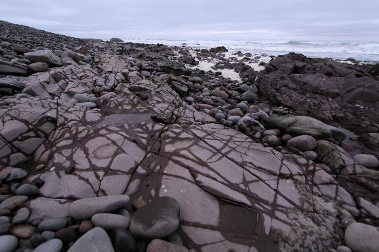 NWR Terrace Bay Resort: Rocks and tidal pools at low tide, a short walk from our room