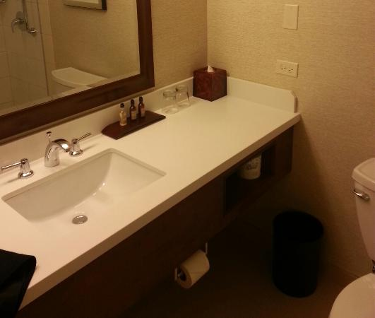 Chicago Marriott Naperville: bathroom