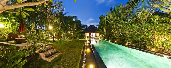 Villa Blubambu: Lap pool by night.