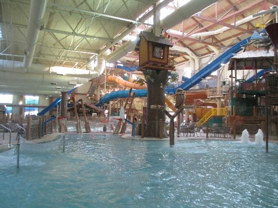 Great Wolf Lodge: From the kid pool looking over the water park