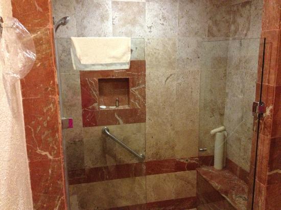 هوتل مارينا إل سيدا سبا آند بيتش: shower