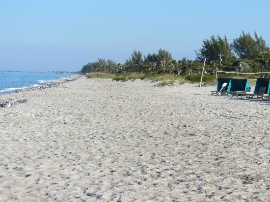 Tween Waters Inn Island Resort & Spa: beach with the 15 -20 dollar chairs