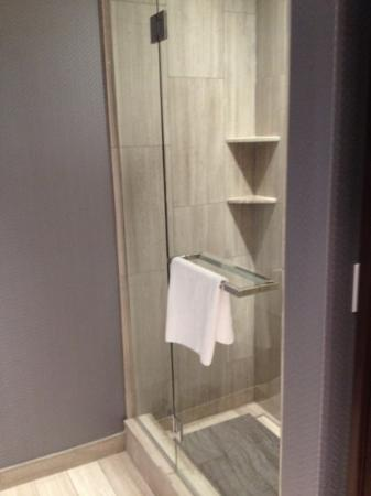 Ivy Boutique Hotel : stand up shower in addition to large tub