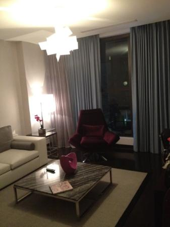 Ivy Boutique Hotel: another view of living area with automatic curtains and shades