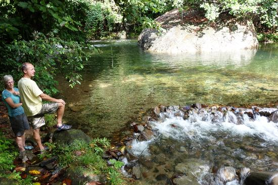 Mermaid's Secret - Riverside Retreat: The swimming hole