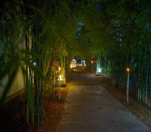 Lime n Soda Beach Front Resort: Entrance