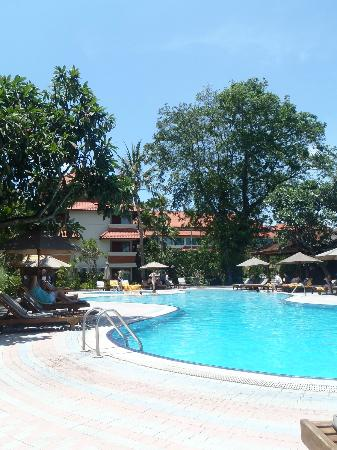 White Rose Kuta Resort, Villas & Spa: pool area
