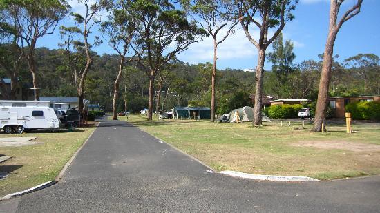 NRMA Ocean Beach Holiday Resort: Camping sites.