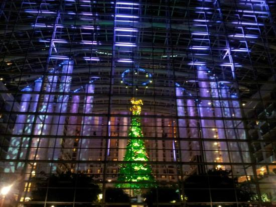 Gaylord National Resort & Convention Center: View from outside, rear, looking in.