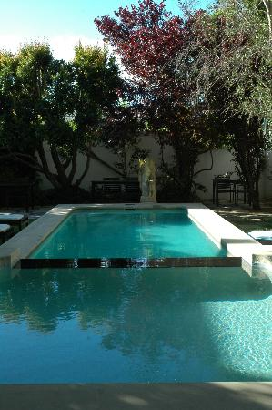Akademie Street Boutique Hotel and Guest House : The pool