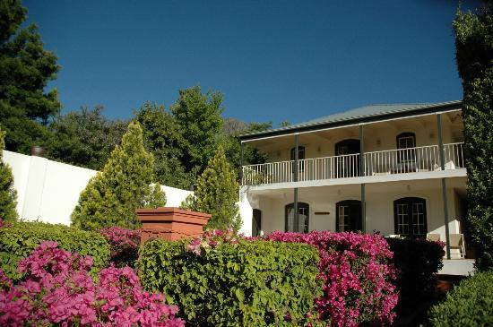 Akademie Street Boutique Hotel and Guest House: The gardens