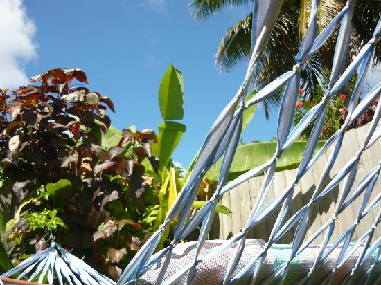 Aremango Guesthouse : Our private hammock