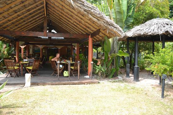 Cafe Le Monde: Au frais sous les palmes coco