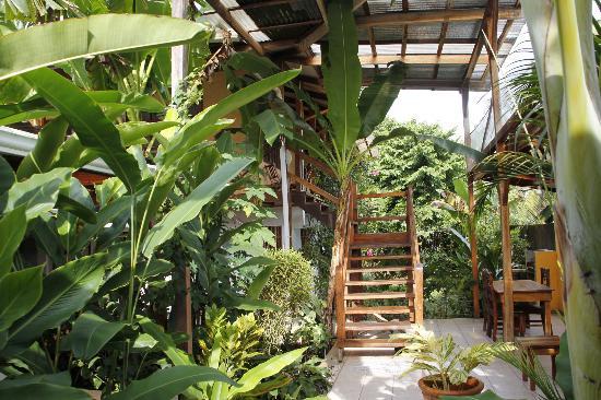 Hotel Pura Vida: Treppenaufgang zu Zimmern im OG