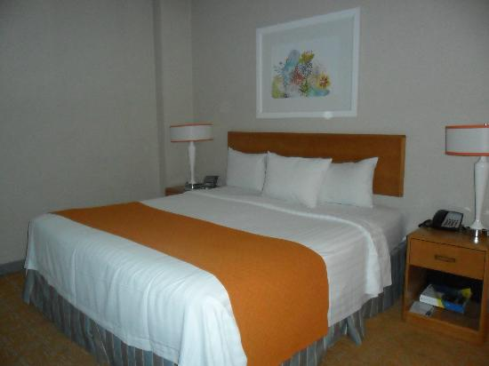 Fairfield Inn & Suites Chicago Downtown/Magnificent Mile: Camera suite executive con letto King