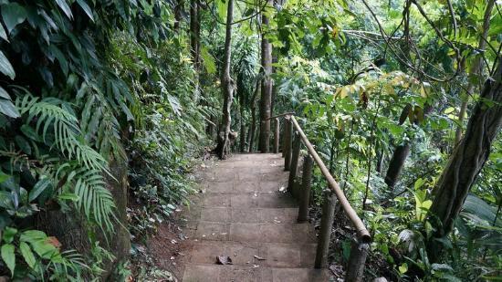 Tinago Falls: Tinago 8