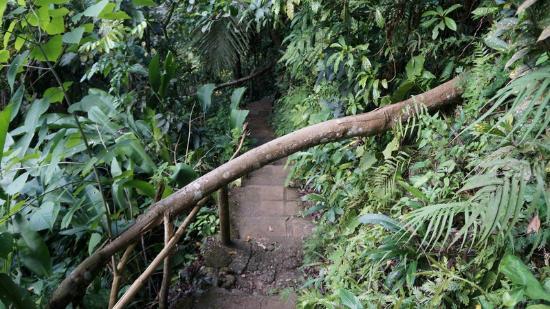 Tinago Falls: Tinago 2