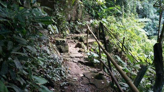 Tinago Falls: Tinago 7