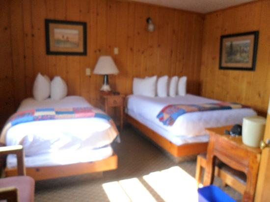 Cedar Pass Lodge: 1 Double & 1 Twin Bed